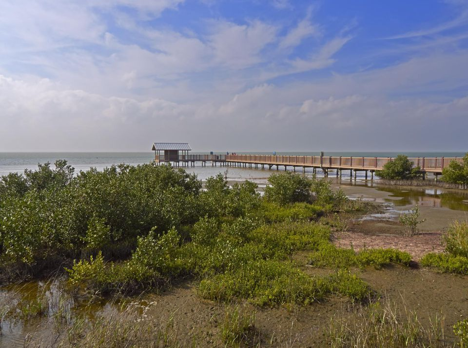 Laguna Atascosa National Wildlife Refuge, South Padre Island Unit, Texas Gulf Coast