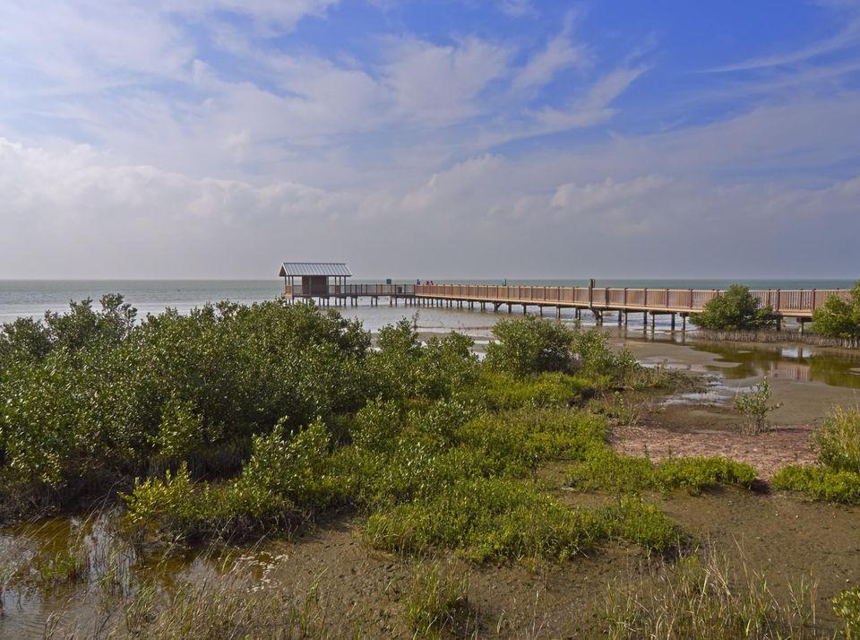 Refugio Nacional de Vida Silvestre Laguna Atascosa, Unidad de South Padre Island, Costa del Golfo de Texas