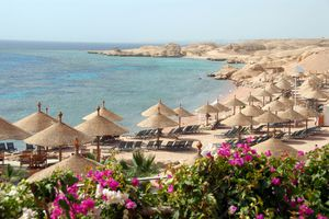 Sharm El-Sheikh beach with parasols and bougainvillea