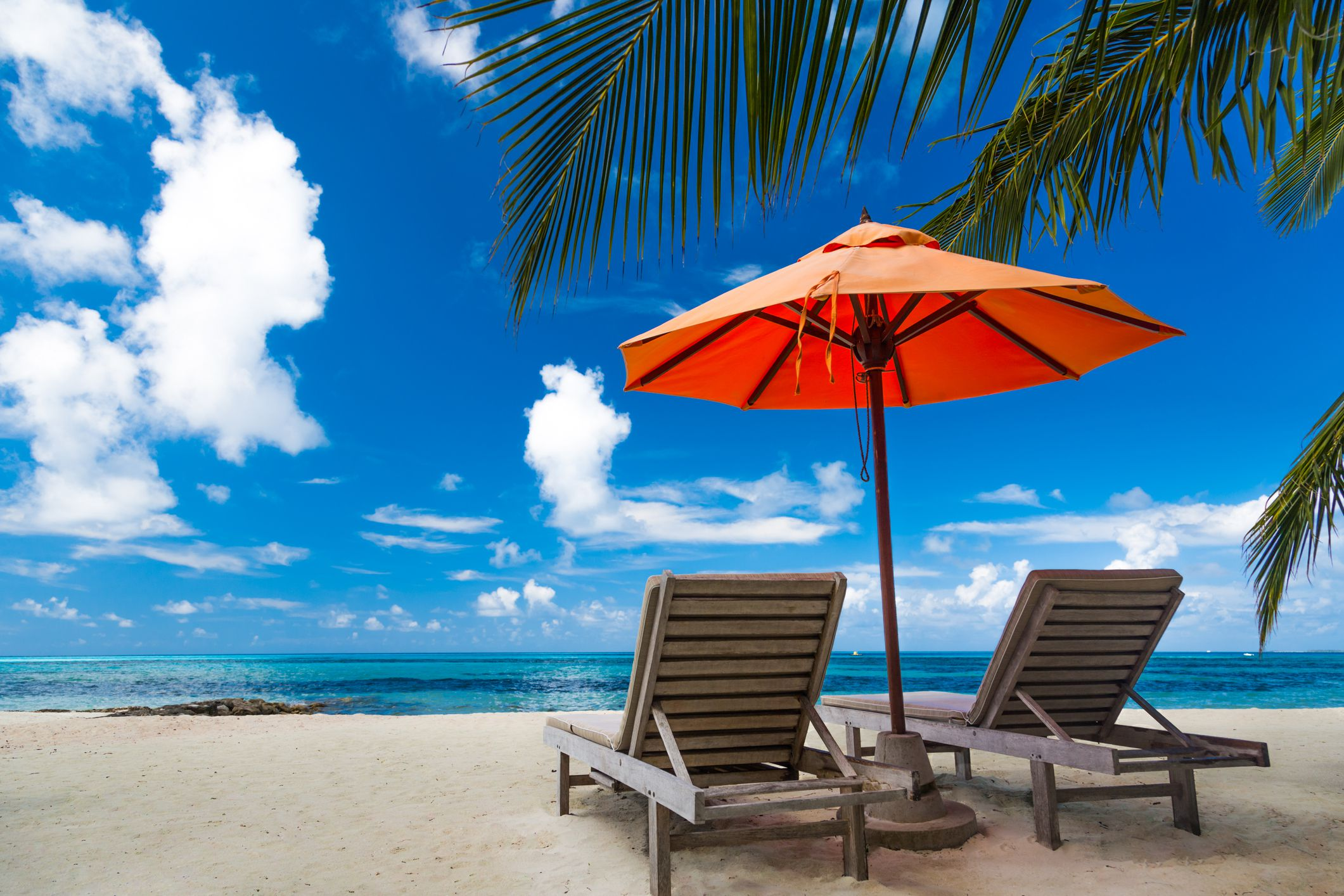 8bb5494b76 The 7 Best Beach Umbrella Anchors of 2019