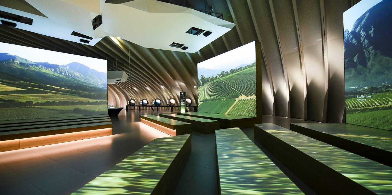 Wine Tour Cite du Vin