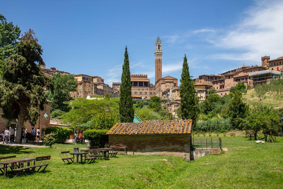 Un parque cubierto de hierba en Siena con arquitectura al fondo