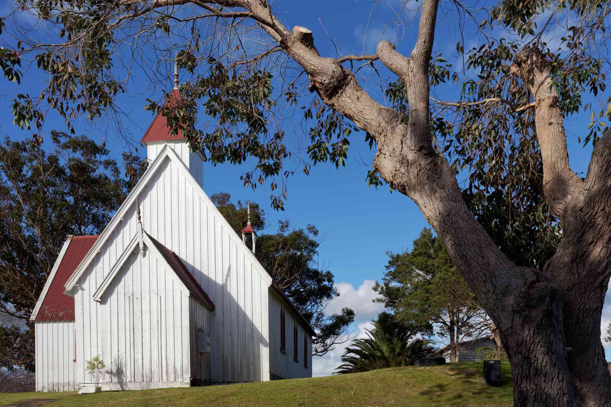 Side view of a small white church with a red roof. There is a tree in the foreground