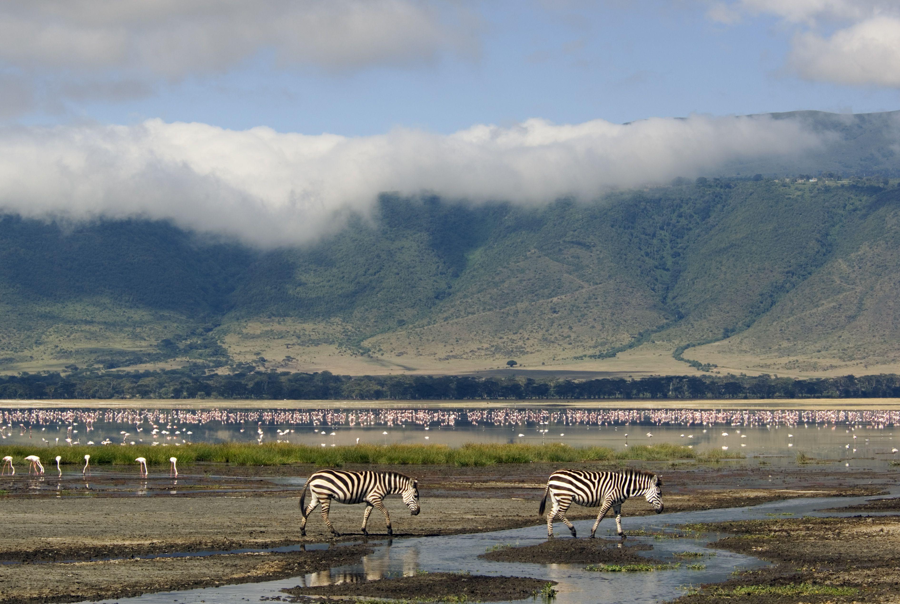 Five of the Best Safari Itineraries in Tanzania