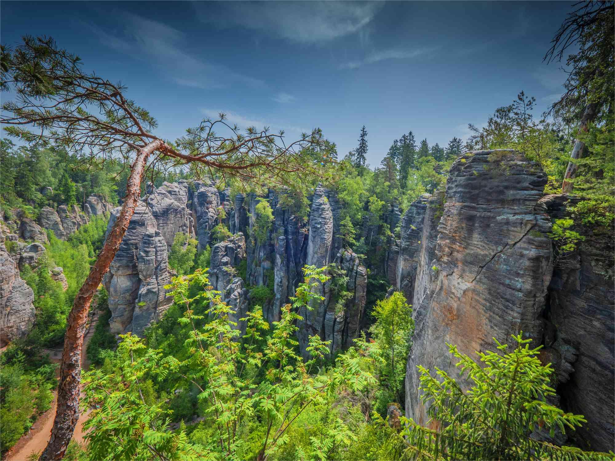 La zona de montaña y las rocas de Prachov del Paraíso de Bohemia, Český ráj,, Jicin, República Checa