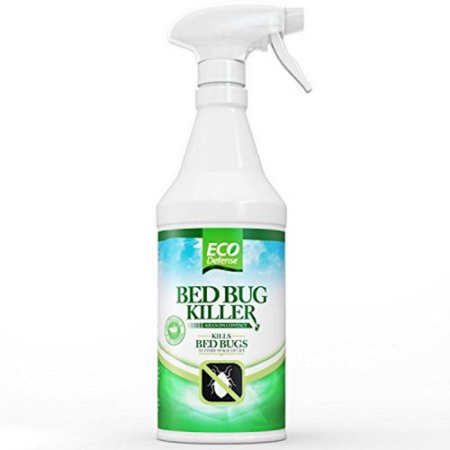 The 7 Best Bed Bug Sprays Of 2020