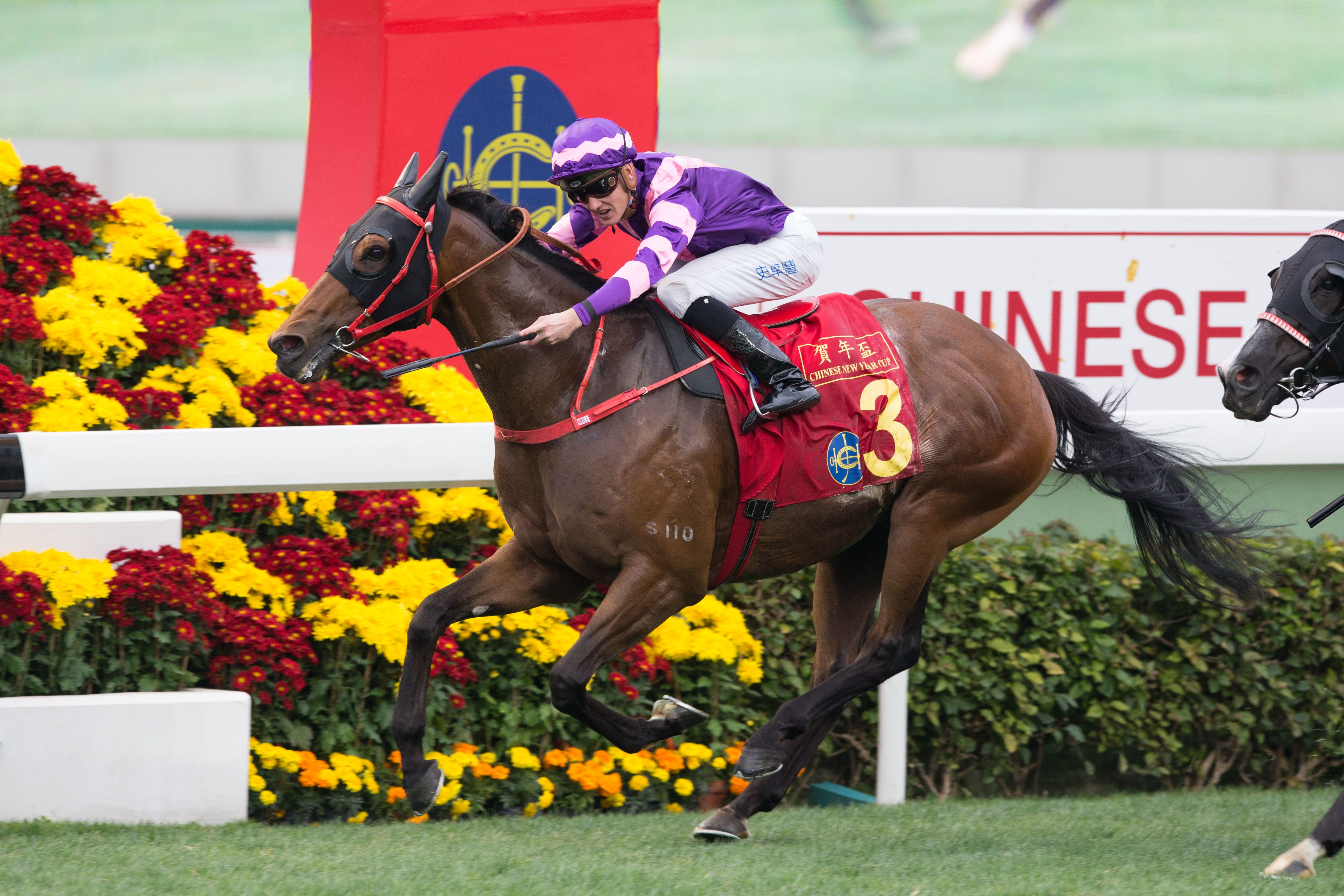 Dundonnell wins the Chinese New Year Cup at Sha Tin racecourse