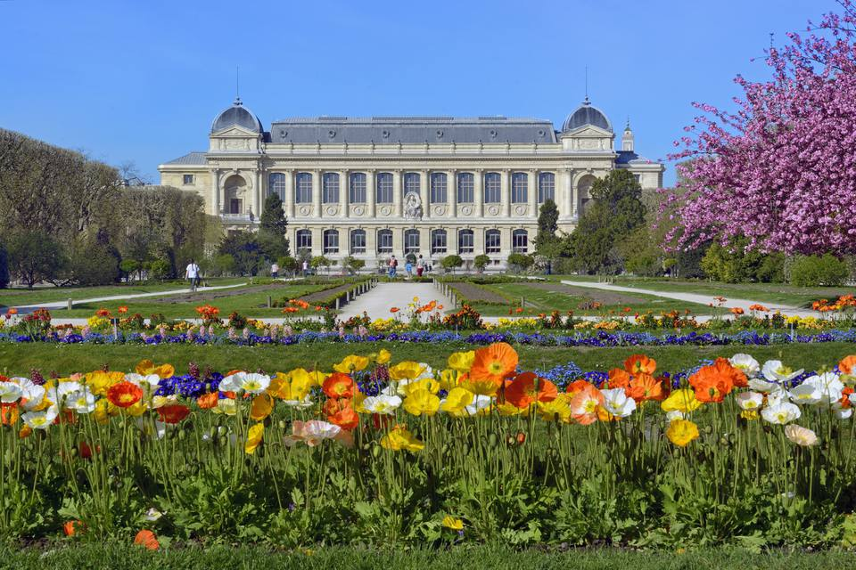 The Jardin des Plantes in Paris: one of the city's loveliest botanical gardens.