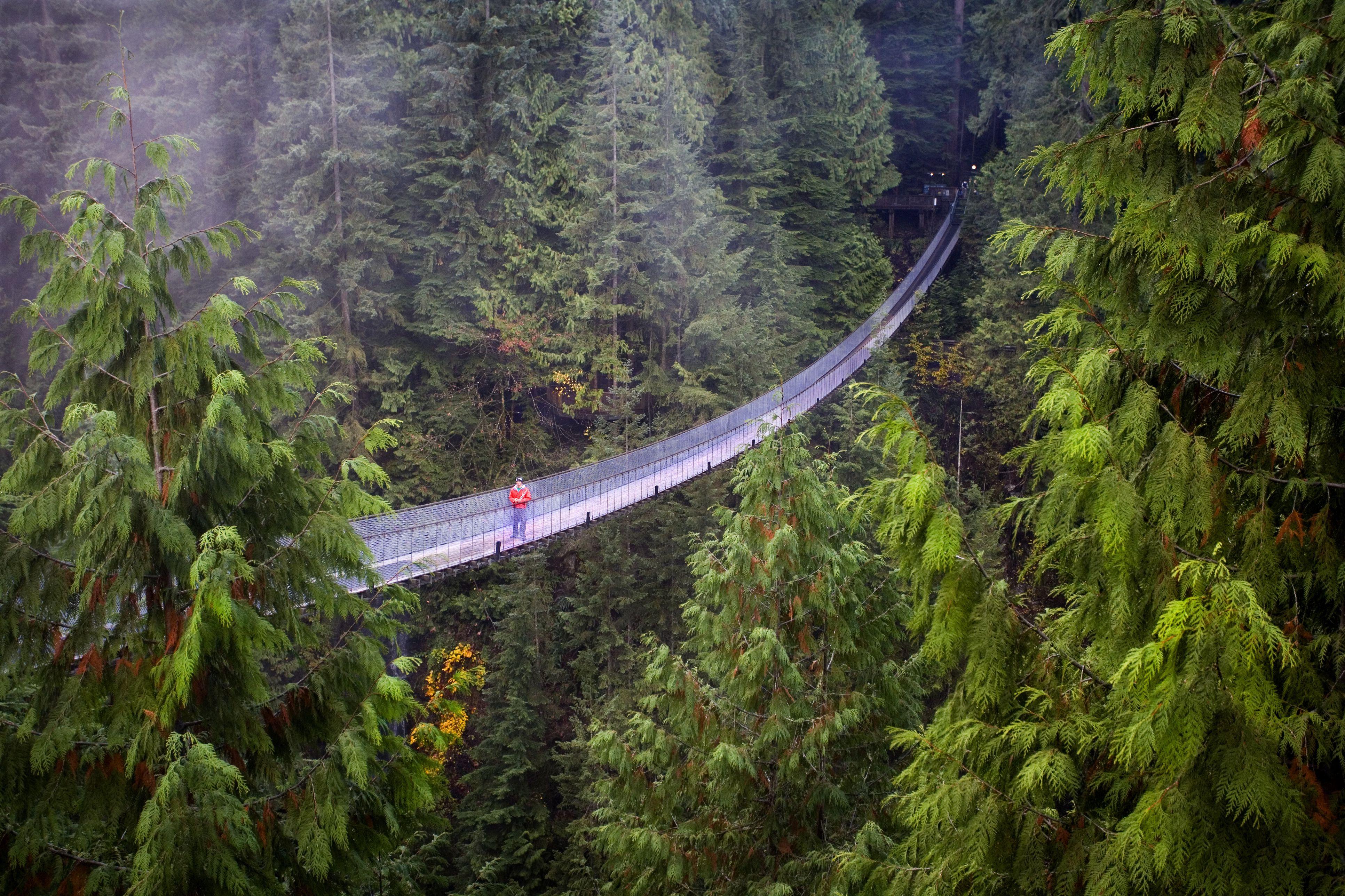 Capilano Suspension Bridge near Vancouver, B.C.
