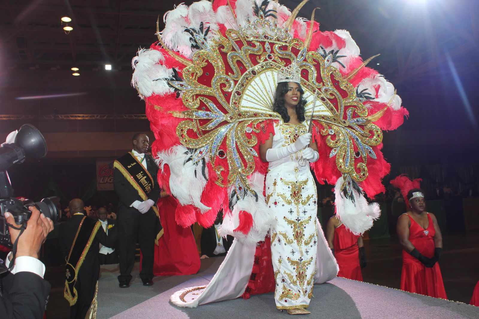 Zulu coronation