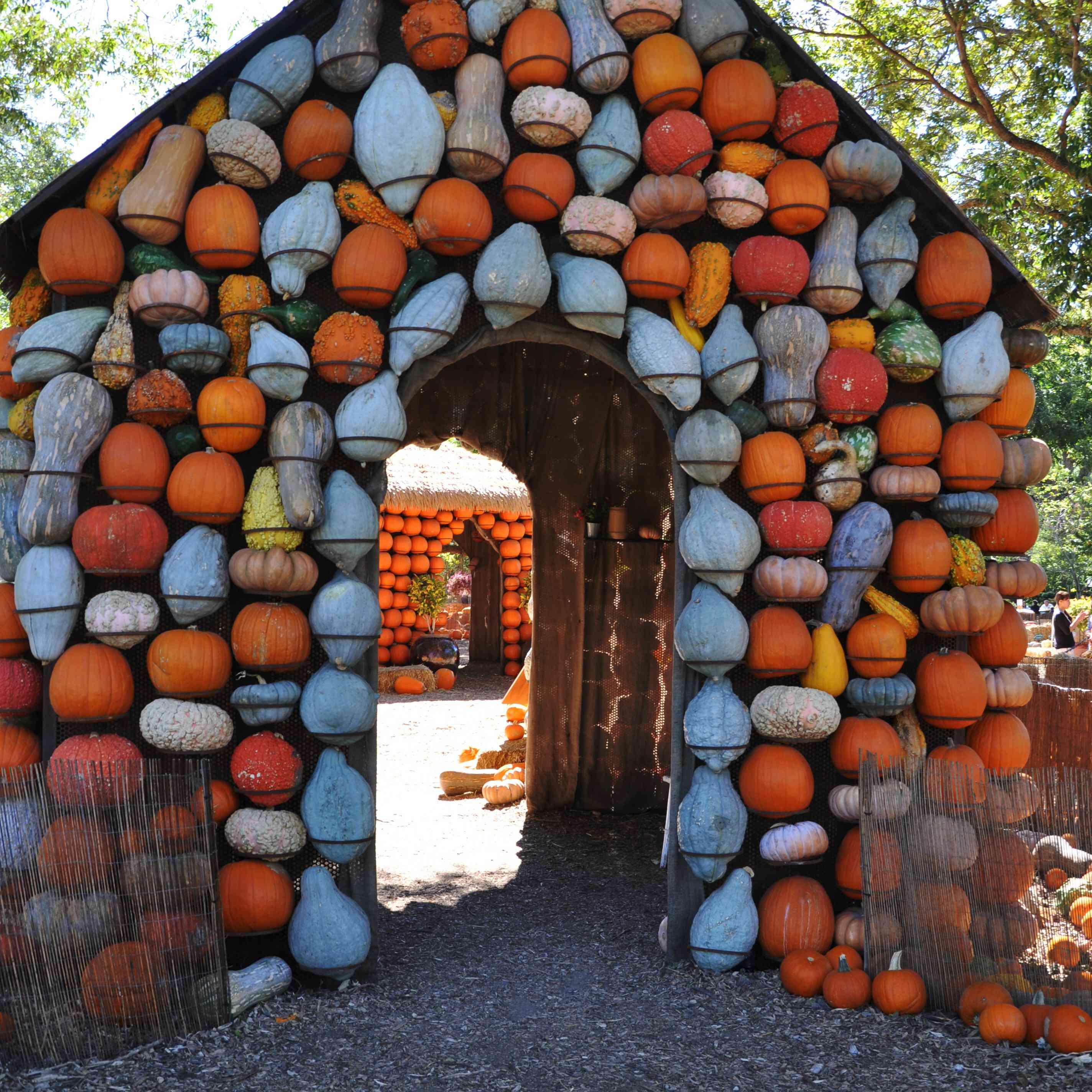 Pumpkin Gourd House