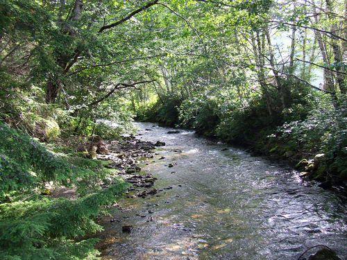Ketchikan Creek in Ketchikan, Alaska