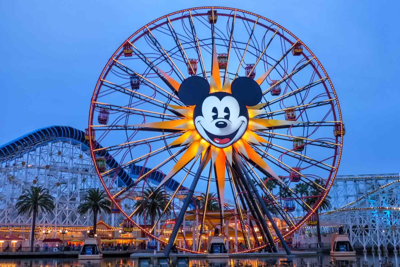 Mickey's Fun Wheel After Dark