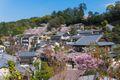 Spring in Hiroshima and Miyajima Island