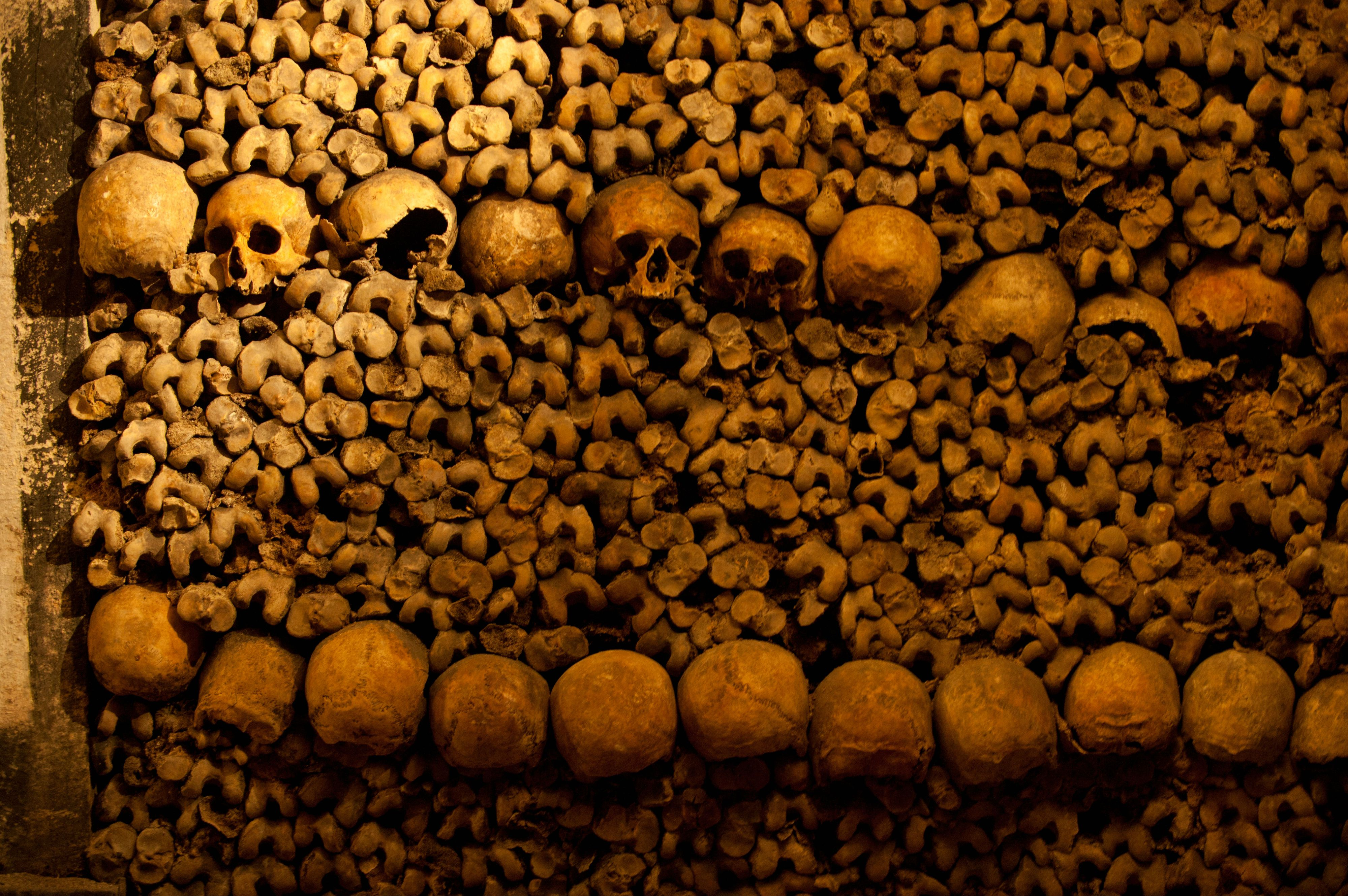 Close-up of stacked bones in catacombs, Paris, Ile-de-France, France