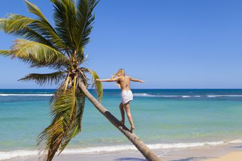 Dominican Republic Young Woman Climbing Palm Tree At Tropical Beach