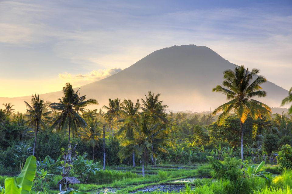 A view of rice fields in Bali at sunset with a volcano in the background