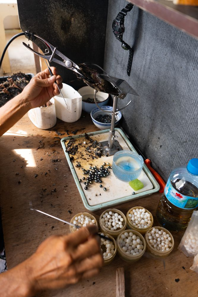 A pearl farmer cleaning pearls