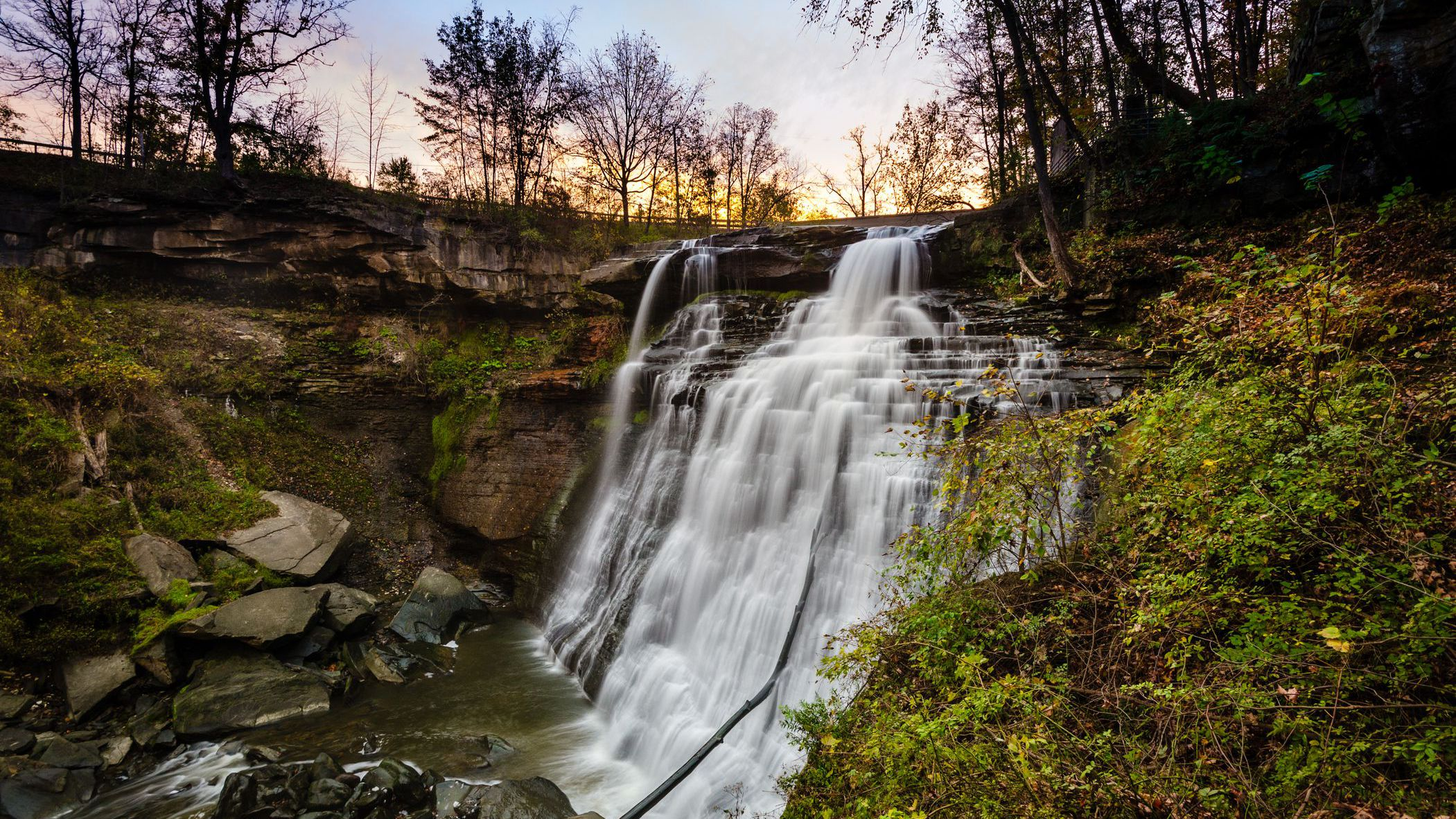 Bird Watching in the Cuyahoga Valley National Park