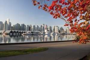 A view of pretty fall colors in Vancouver's Stanley Park