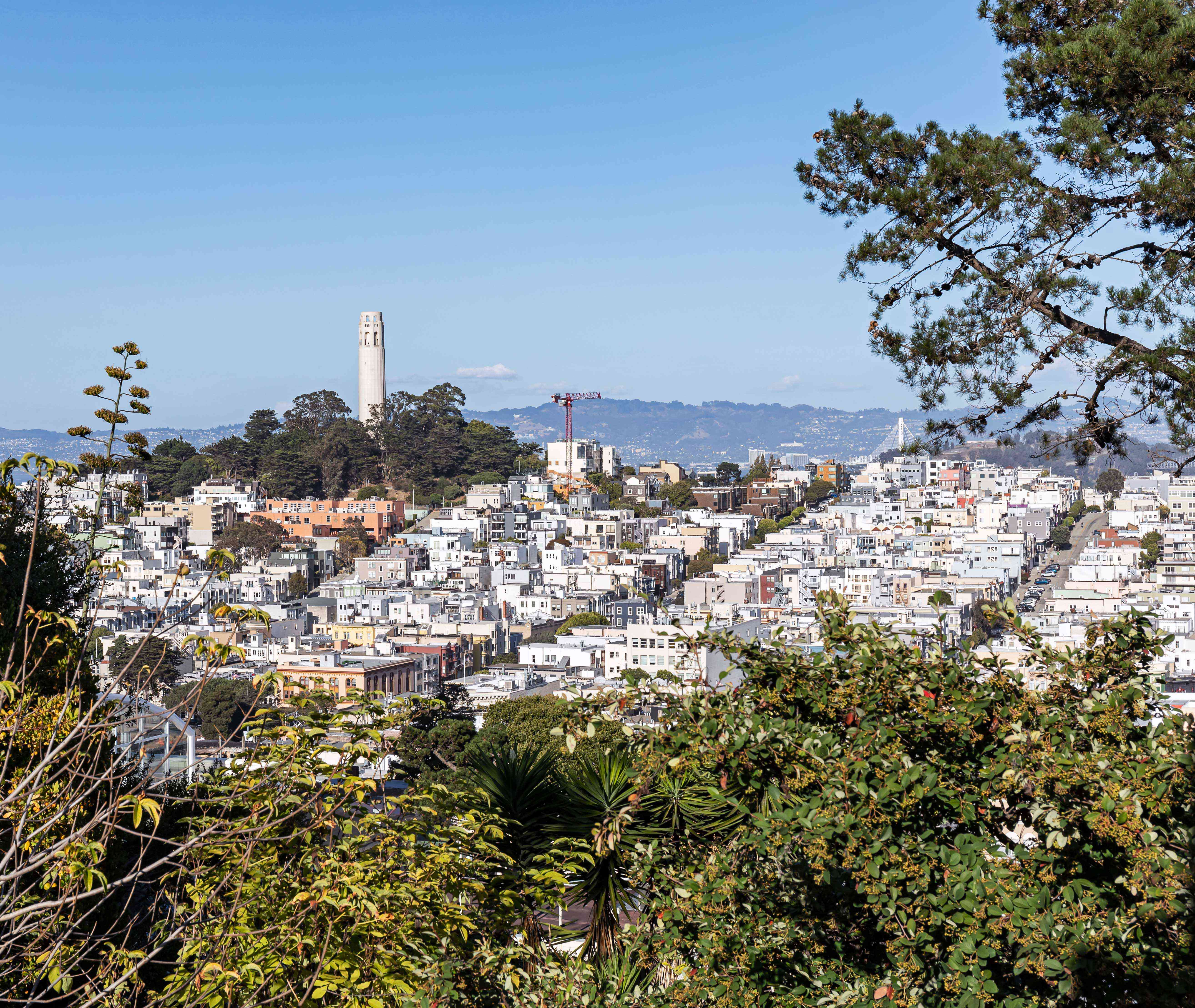 Telegraph Hill in San Francisco