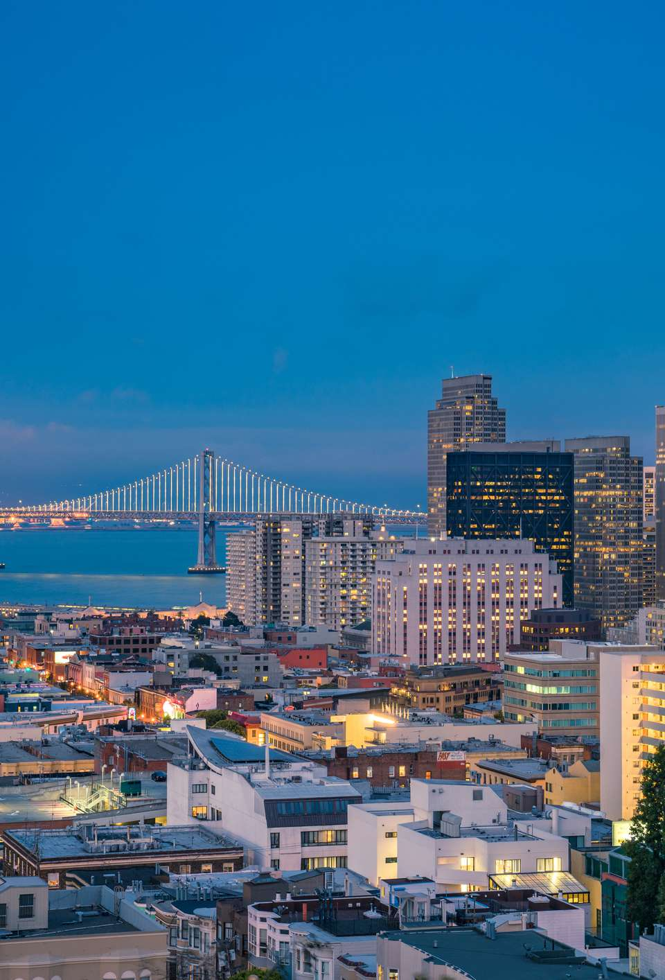 Night over San Francisco Downtown and Bay Bridge from Ina Coolbrith Park, USA (Dusk)