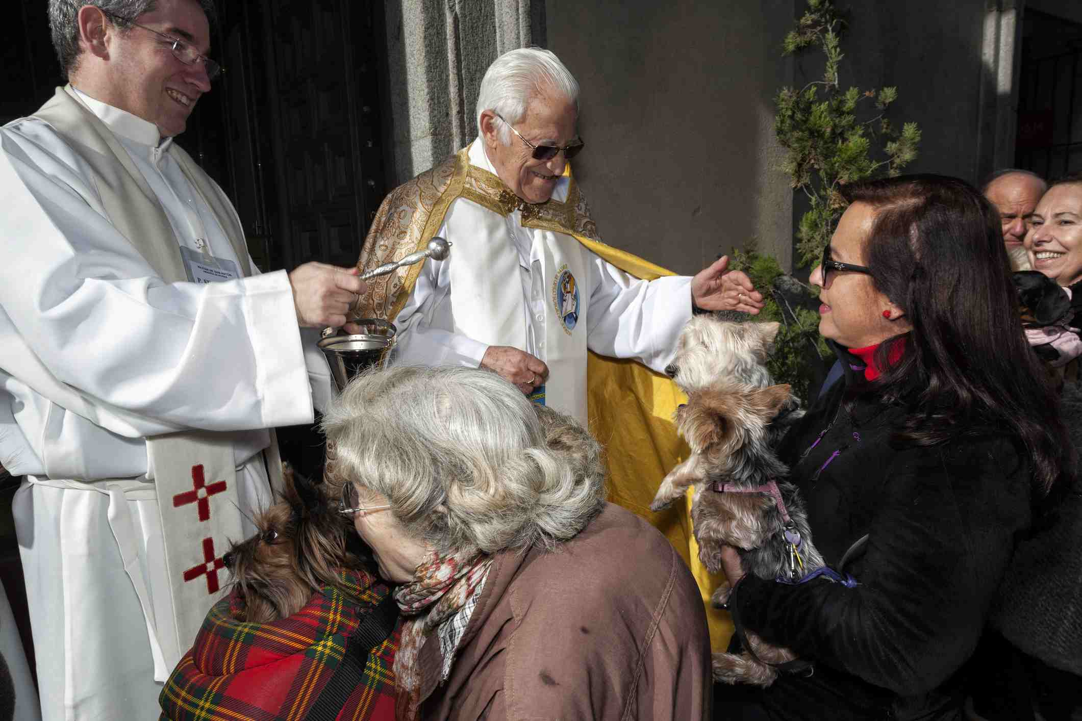Blessing of Animals on Saint Anthony Day