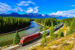 Train passing famous Morant's curve at Bow Valley in autumn, Banff National Park, Canadian Rockies, Canada.