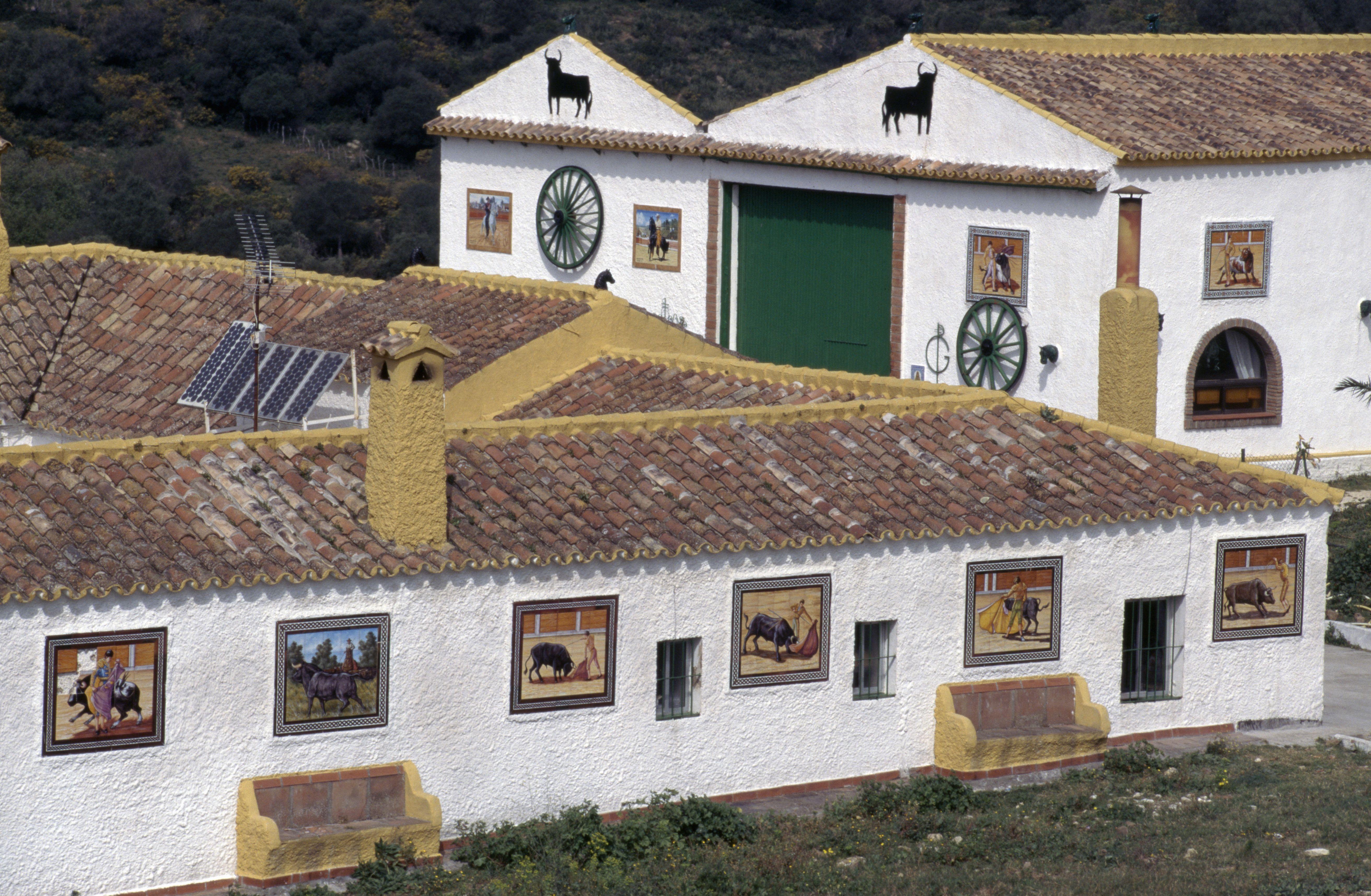 Bull farm near Algeciras, Andalusia, Spain