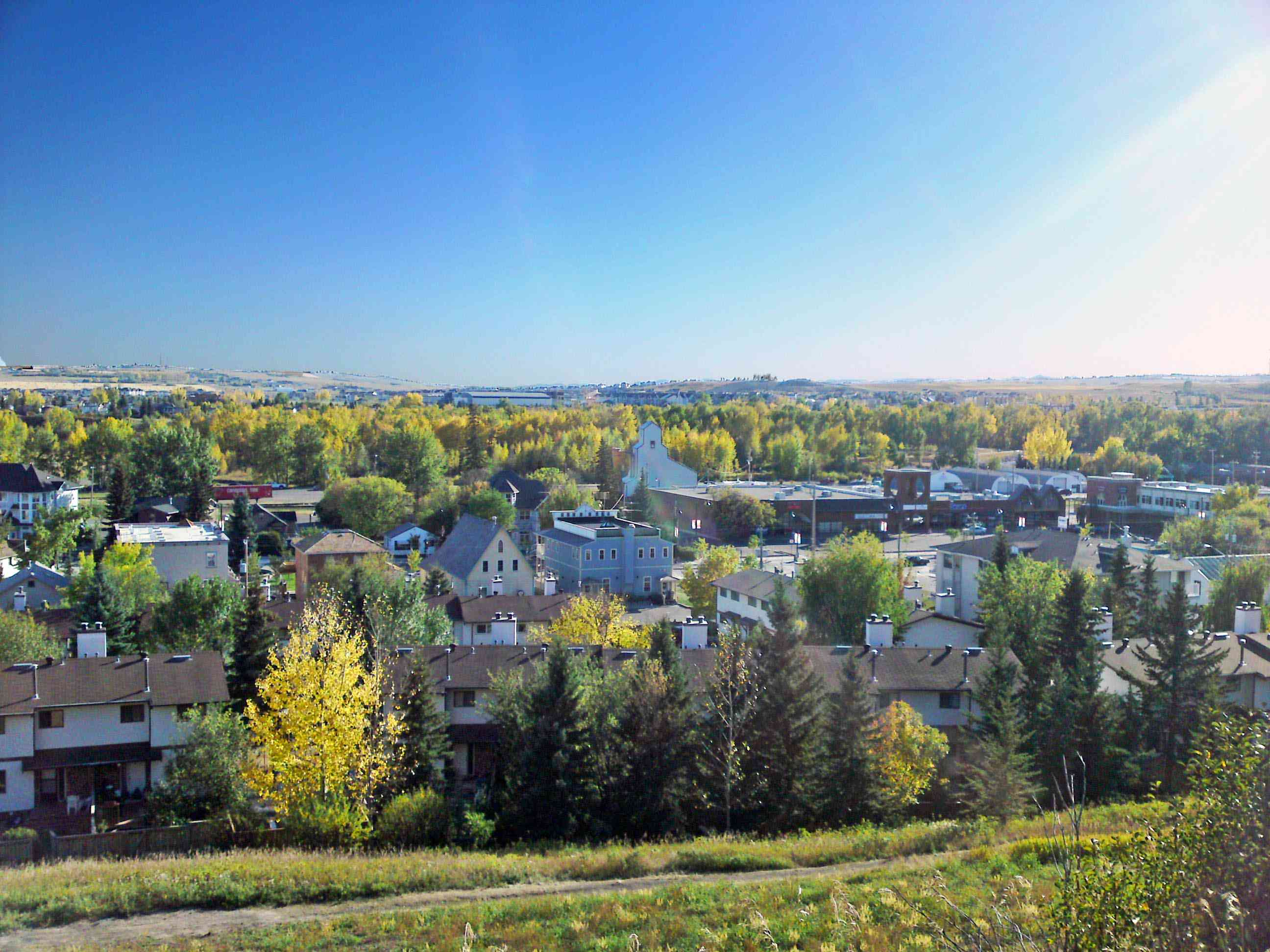 view of buildings and trees in downtown okotoks