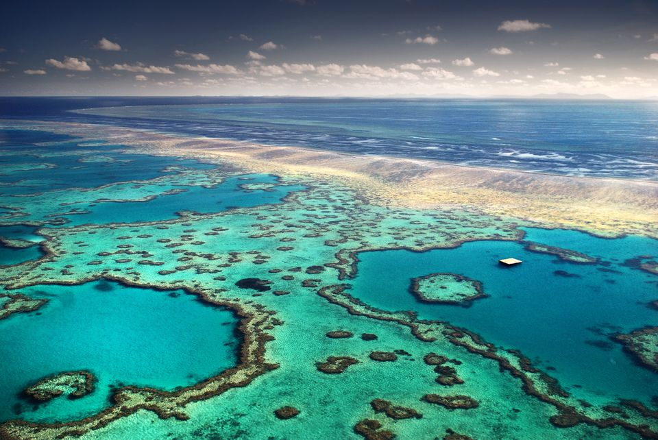Australian reef from above