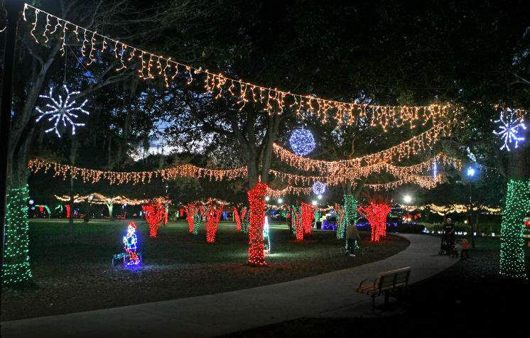 Lowry Park Zoo Christmas.Things To Do For Christmas In Tampa Bay