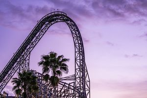 Iron Gwazi coaster at Busch Gardens Tampa Bay