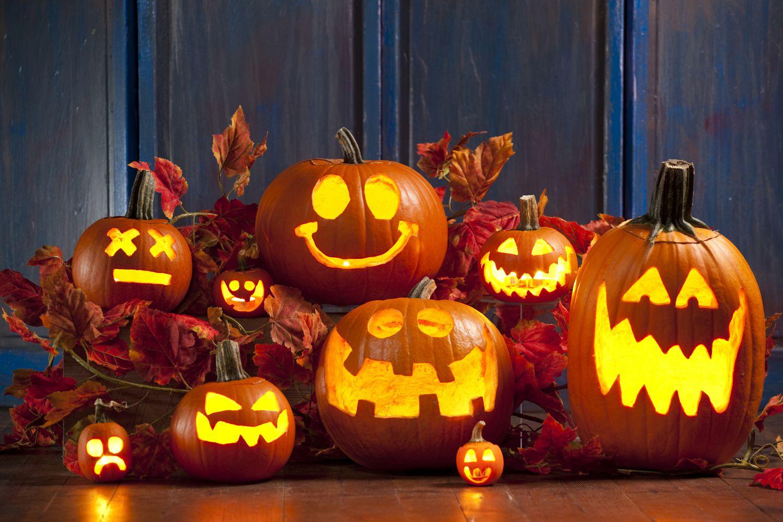 phoenix photos: halloween pumpkin patches and festivals