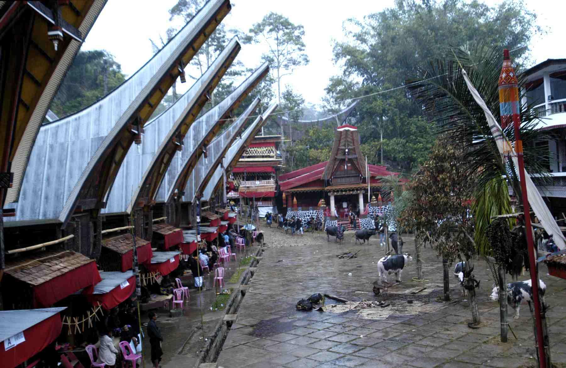 Tongkonan houses at Tana Toraja