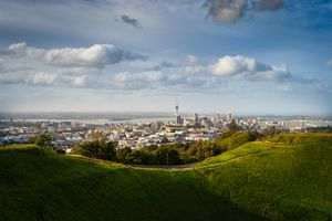 View of Auckland from green hilltop