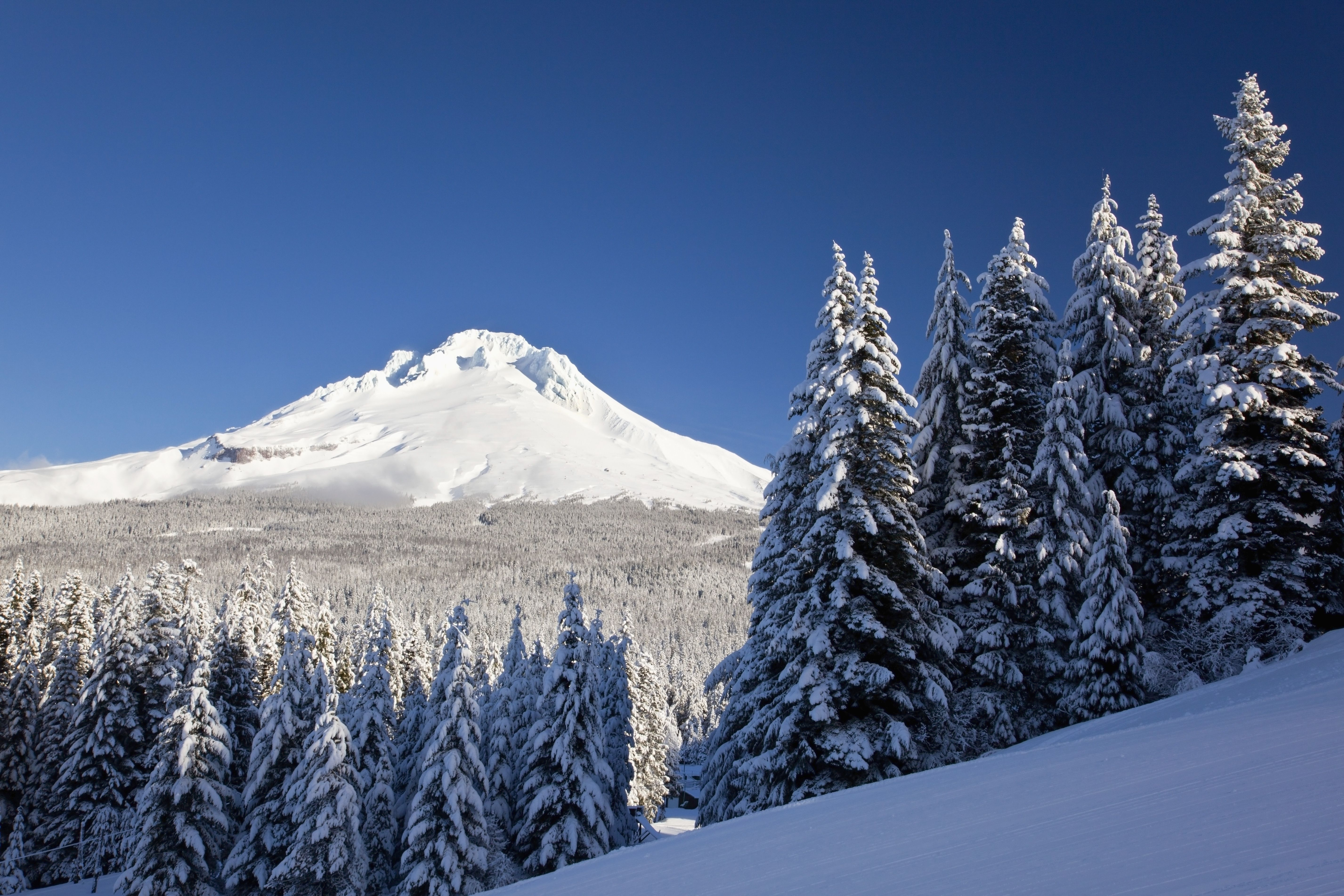 winter snow over the cascade range with Mt. Hood visible in background