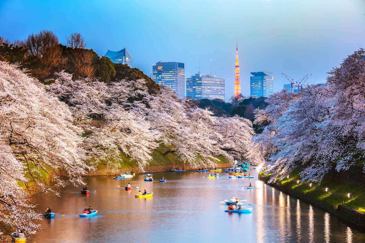 Tokyo river with sky tower