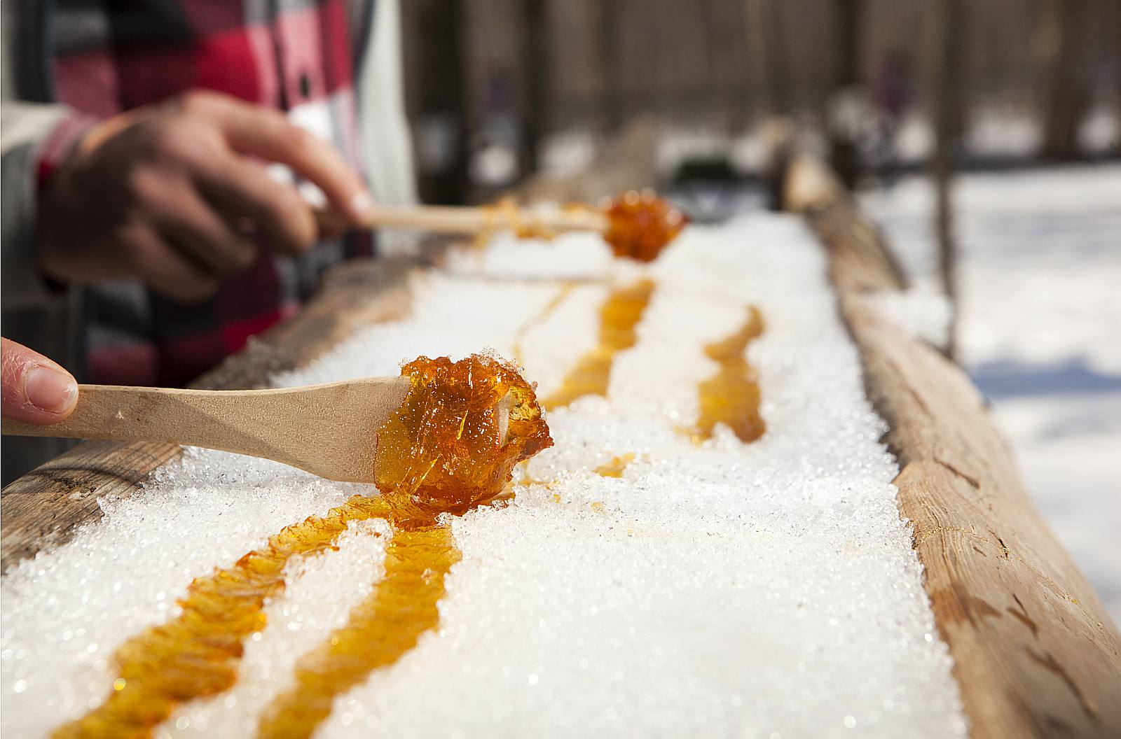 Maple Syrup Etiquette 5 Things Not To Do With Hot Taffy On