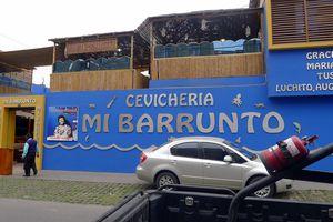 Lima - pisco sours, football bar & a cat park