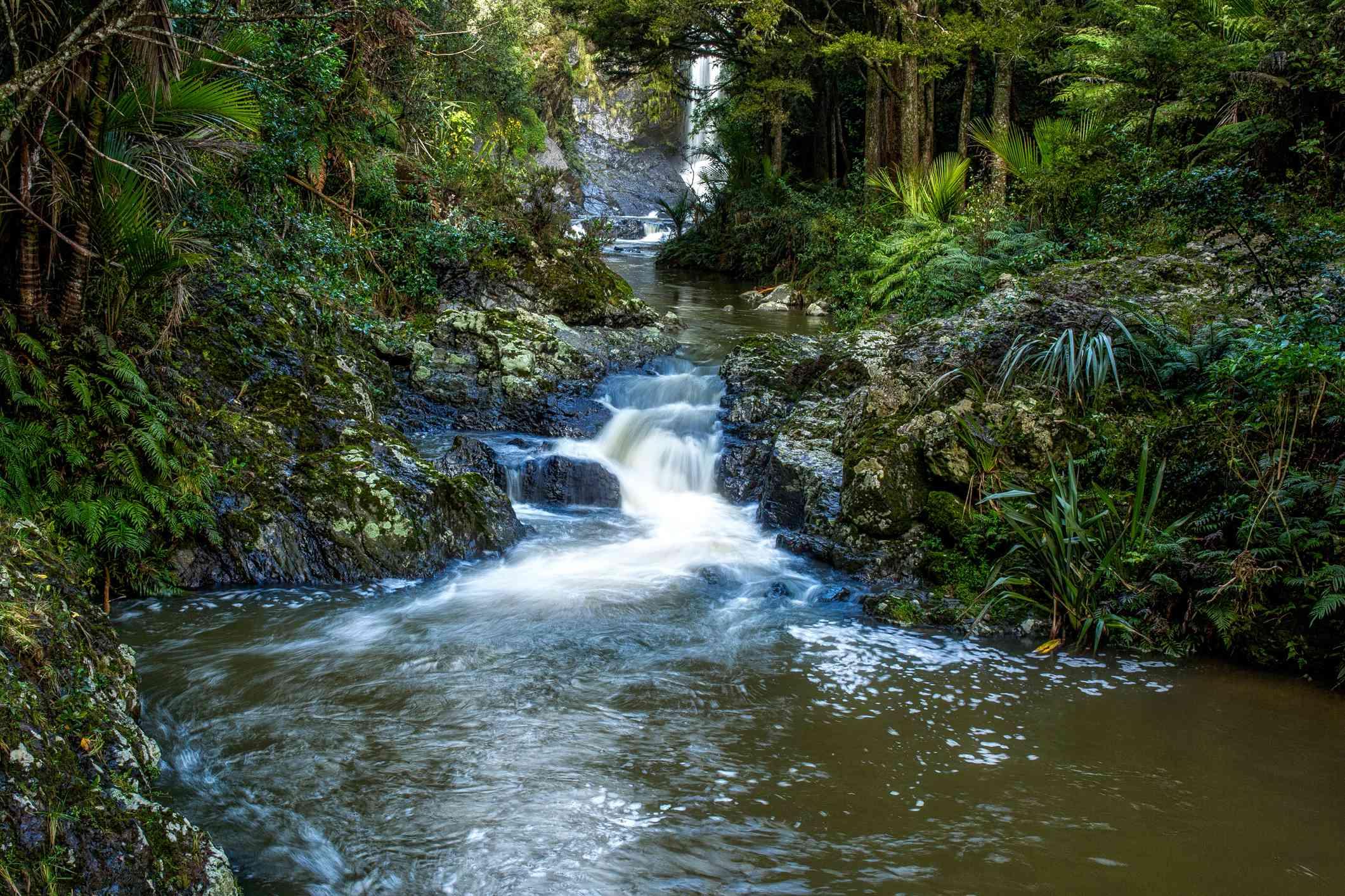 Piroa Falls Downstream