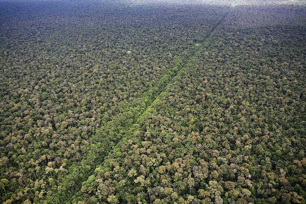 Pipeline through Peruvian Amazon Jungle