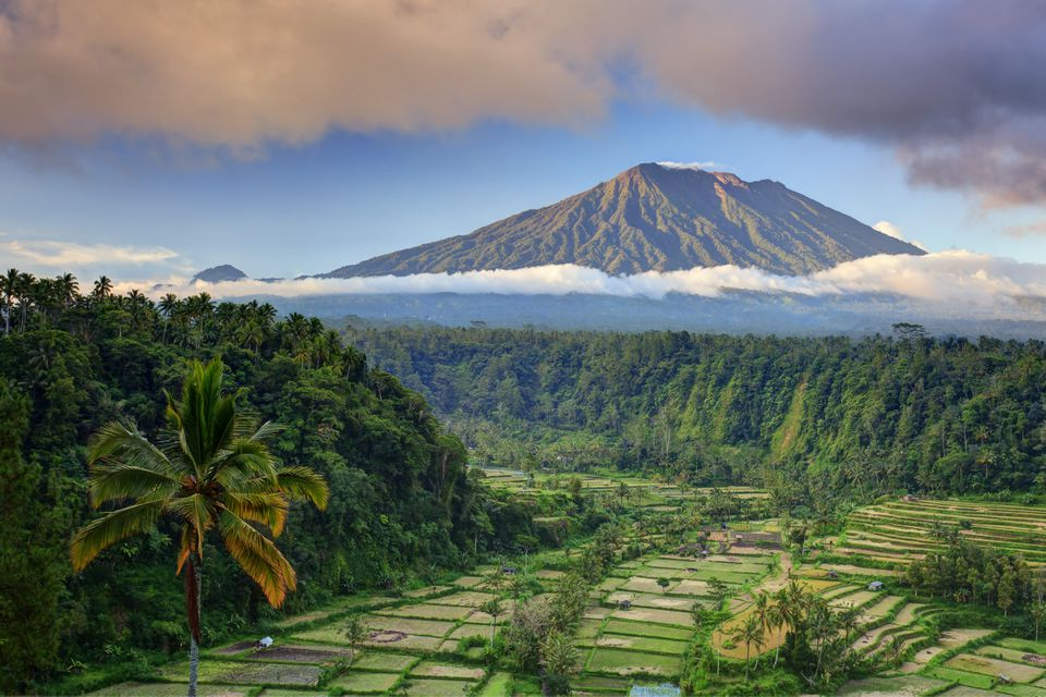 Rice terraces and Gunung Agung in Bali
