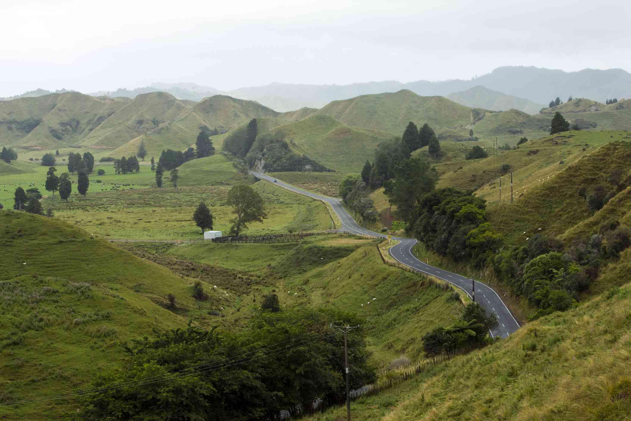 road winding through steep green hills