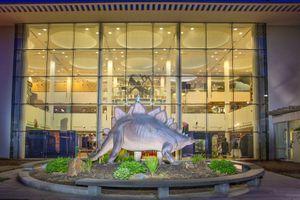 Ecotarium Museum Overnights