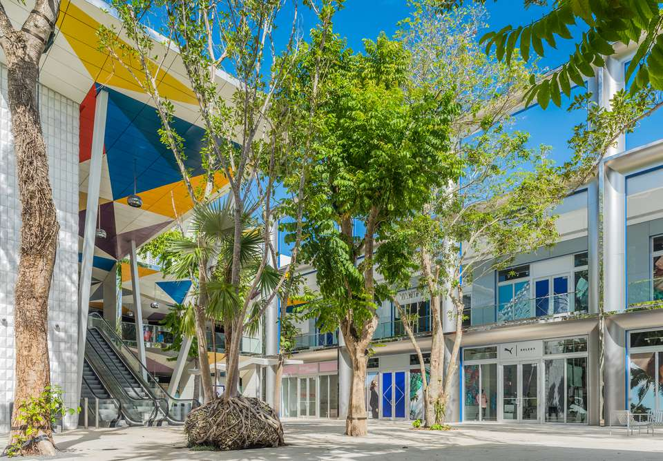 Luxury shopping in Miami Design District