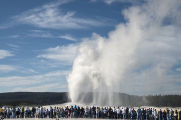 The iconic geyser in Yellowstone