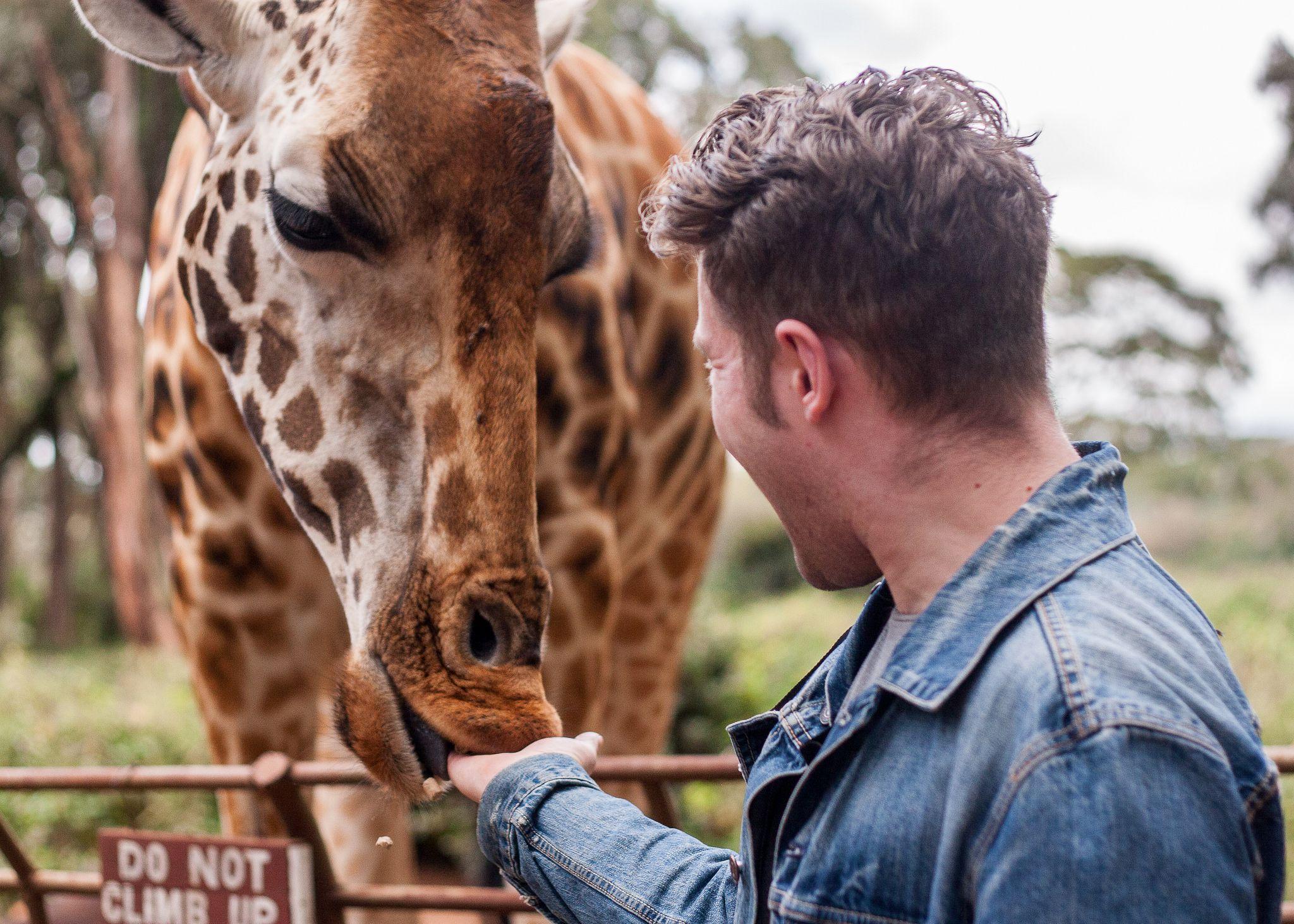 Найроби Жираф центр