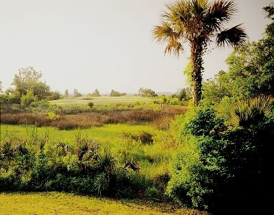 Lowcountry Landscape at the Old South Golf Links