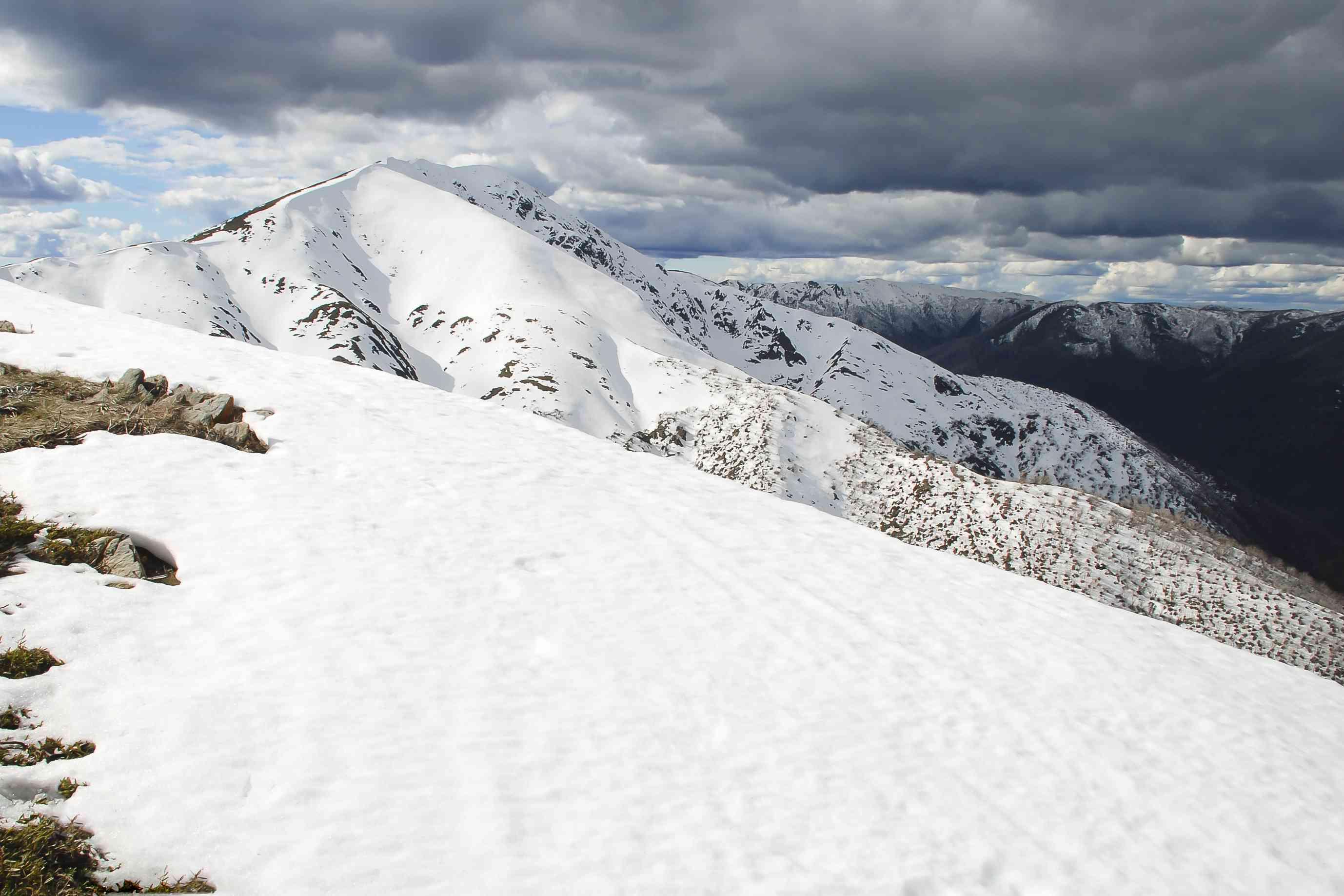 Alpes victorianos - Australia